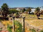 Kos stad - Griekse Gids foto 4 - Foto van De Griekse Gids