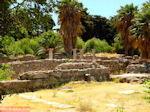 Kos stad - Griekse Gids foto 32 - Foto van De Griekse Gids