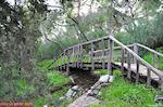 Houten brug aan de helling van Philopapou-heuvel