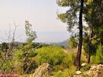 Bosrijk Noord Evia, nabij Aedipos en Orei